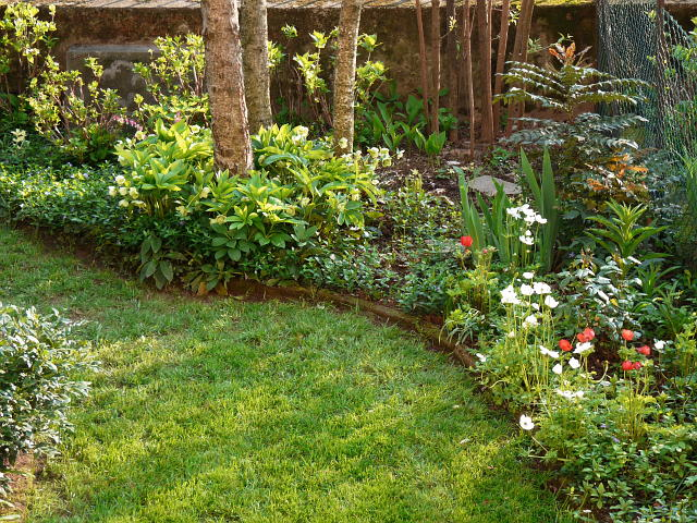 Il giardino pasquale for Aiuole fiorite immagini